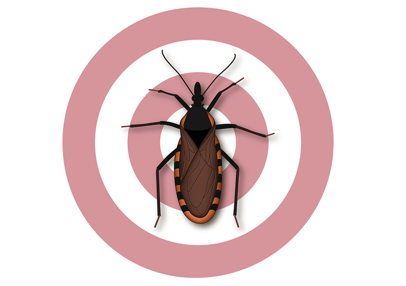 FDA Approves Lampit (nifurtimox) for the Treatment of Chagas Disease in Children
